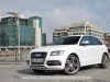 Audi-SQ5-13_mini