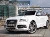 Audi-SQ5-25_mini