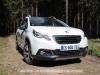 Peugeot_2008_33_mini