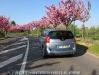 Peugeot_5008_HDI_150_28