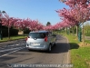 Peugeot_5008_HDI_150_29