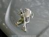 Peugeot_508_GT_04