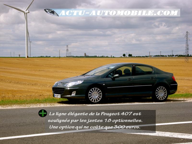 Peugeot 407 Feline 2.2 HDI