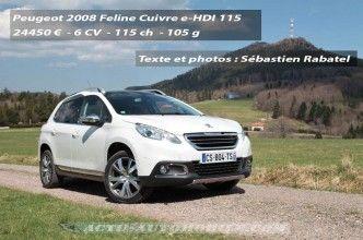 Peugeot_2008_12_mini