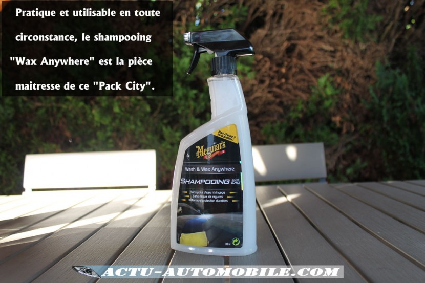Shampooing Wash and Wax Anywhere