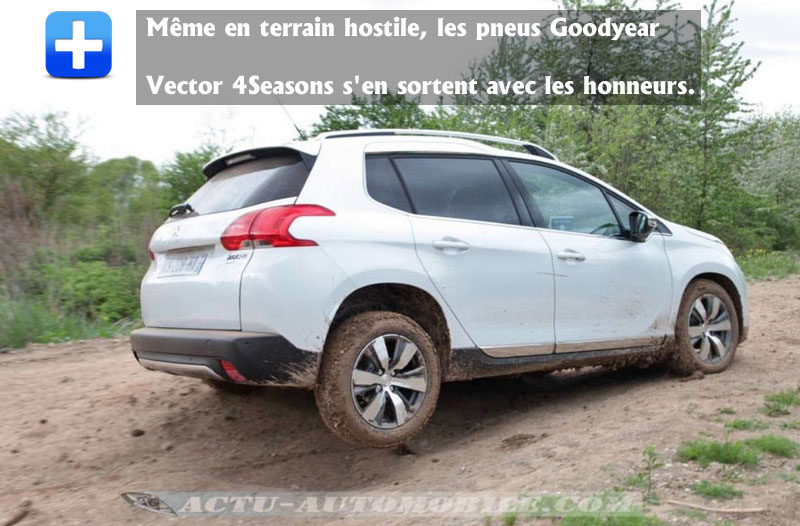 Le pneumatique Vector 4Seasons Gen-2 hors des sentiers battus