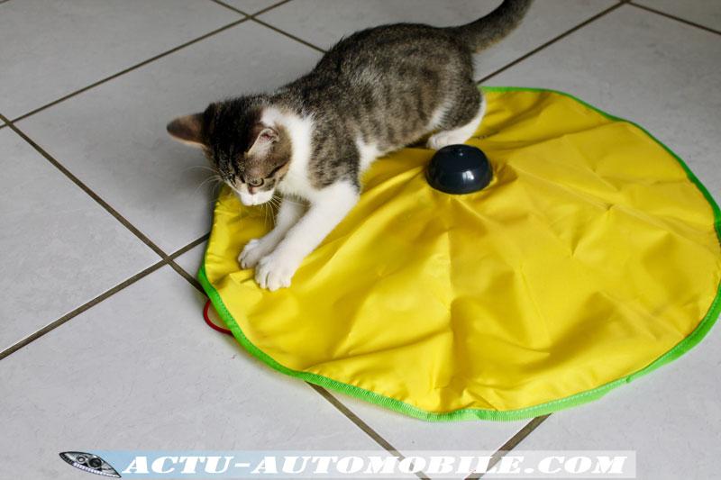 Tapis pour chat Cat's miaou