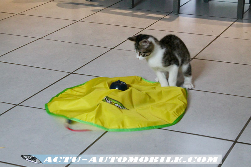 Tapis pour chat Cat's miaou